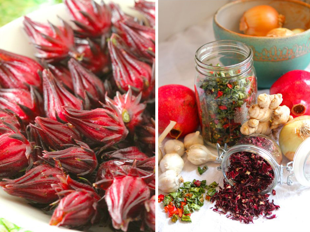 hibiscus fire cider ingredients