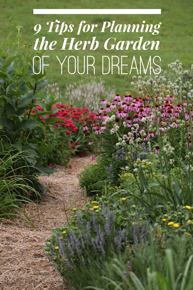 9 Tips for Planning the Herb Garden of Your Dreams - Chestnut School of Herbal Medicine