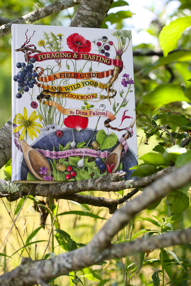 The ten best books on foraging wild foods and herbs if you love dinas recipes you can catch more of them in our online foraging courseshes a contributor you can purchase her book and access her blog via forumfinder Images