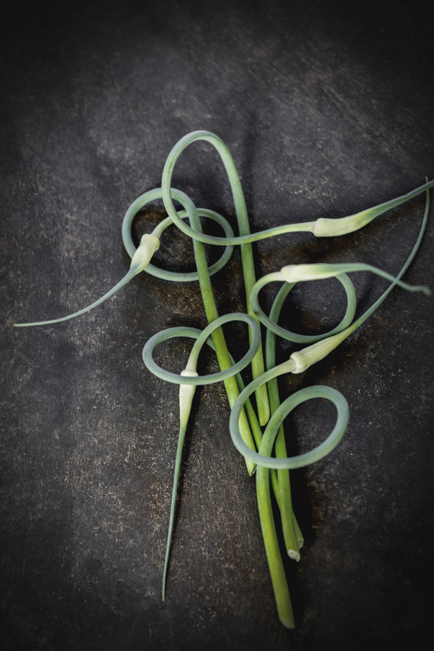 Garlic scapes (Allium sativum)