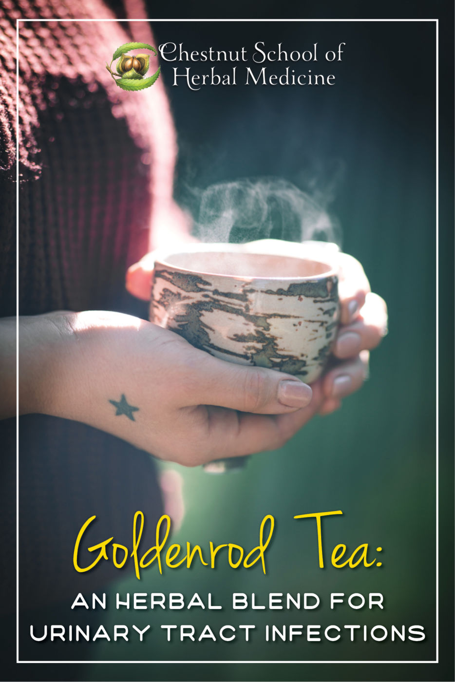 Goldenrod Tea An Herbal Blend for Urinary Tract Infections