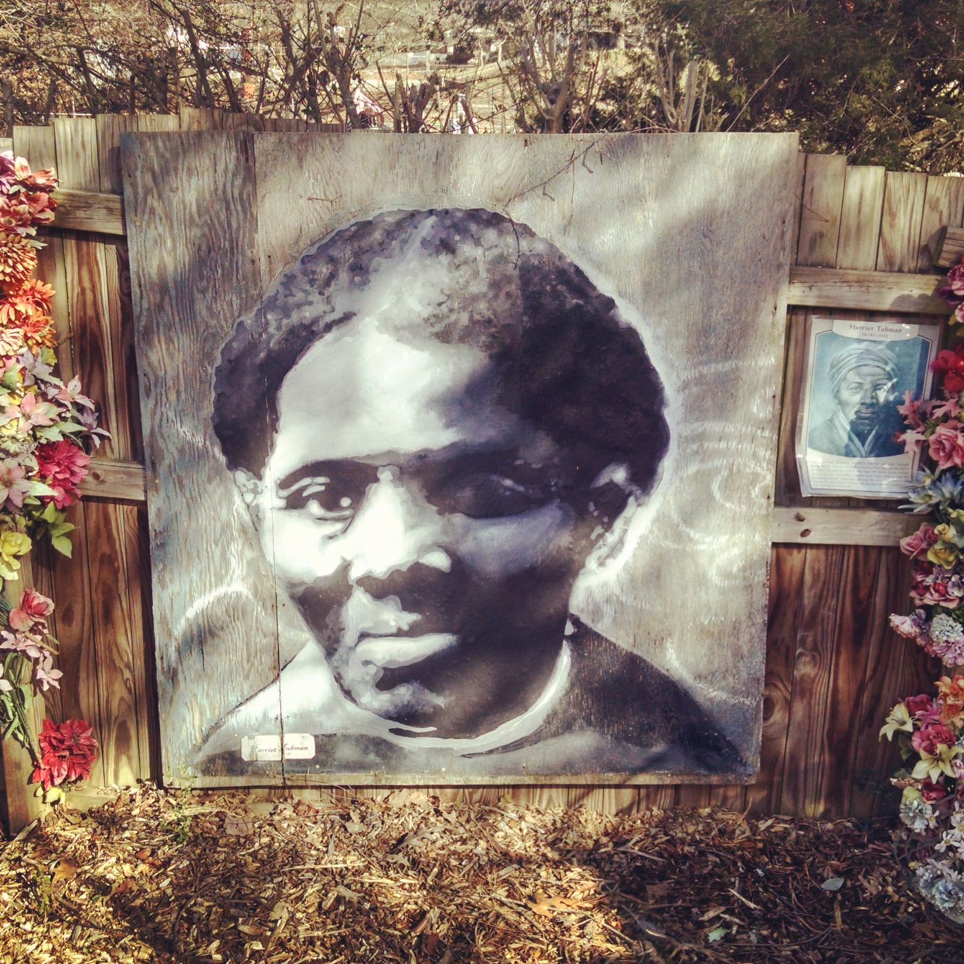 A mural of Harriet Tubman in place at the Burton Street Garden in Asheville, North Carolina