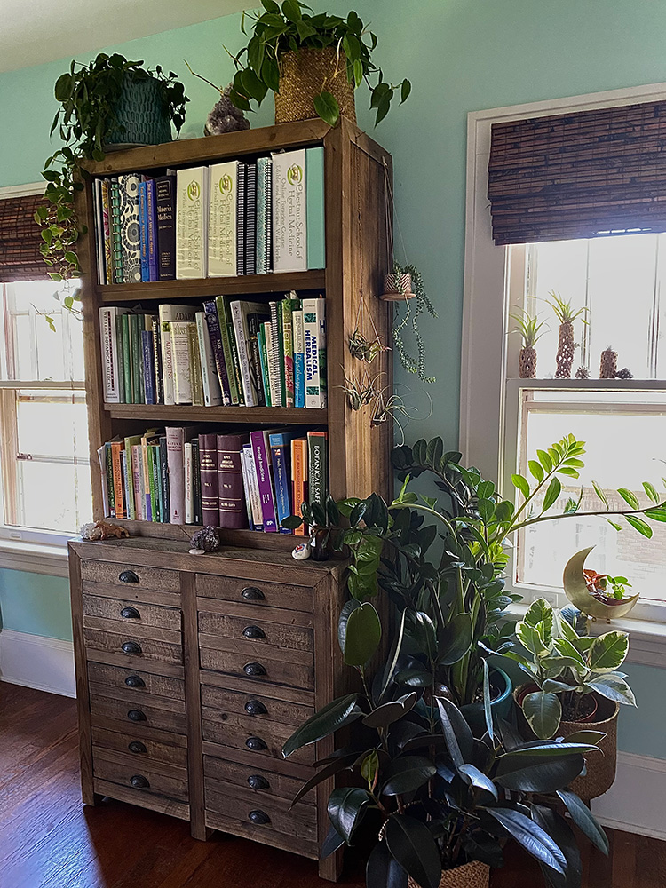 Green plants surrounding a wooden bookcase filled with herbalism books